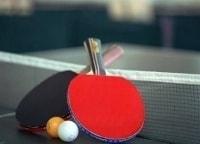 Настольный теннис Кубок мира Льеж Мужчины Финал в 12:00 на канале