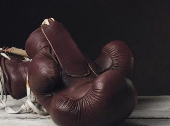 программа Бокс ТВ: Не зайка