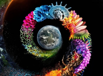 Неизвестная планета земля Дом в 19:50 на Россия Культура