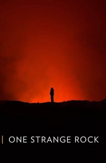 программа National Geographic: Неизвестная планета земля Выживание