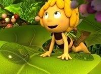 Новые приключения пчёлки Майи в 15:45 на канале