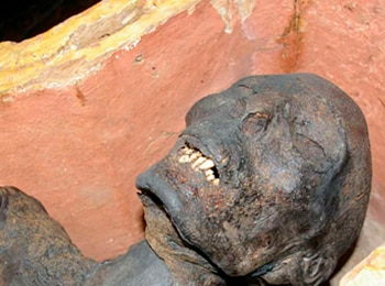 программа History2: О чем молчат мумии Рыбак