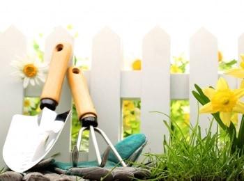 программа Усадьба: Обнови свой сад 4 серия
