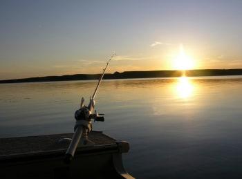 программа Охота: Охота и рыбалка в 31 серия