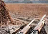 Охота с Кузенковым