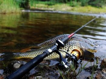 программа Охотник и рыболов: Патерностер Городские условия: Часть 1