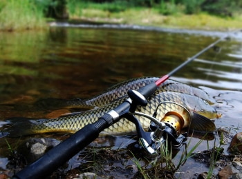 программа Охотник и рыболов: Патерностер Из зимы в лето