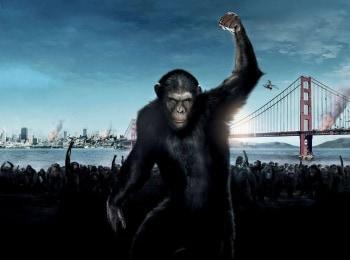 программа Первый канал: Планета обезьян: Революция