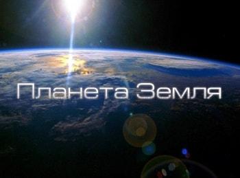 программа Пятница: Планета Земля Великие равнины