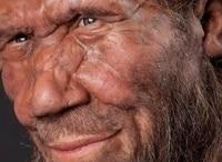 Почему исчезли неандертальцы? в 07:35 на Россия Культура