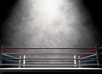 Профессиональный бокс Афиша в 16:40 на канале