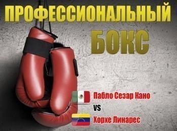 Профессиональный бокс Пабло Сезар Кано против Хорхе Линареса в 15:55 на МАТЧ! Боец