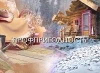 программа Усадьба: Профпригодность 18 серия