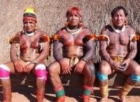 программа National Geographic: Пропавшие города Амазонии: Легенда становится реальностью