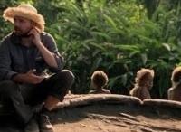 программа Телепутешествия: Простак за границей Список желаний Встретиться с гориллами