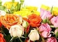 программа Загородная жизнь: Розовое настроение 9 серия