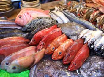 Рыба-От-филе-до-фарша-Теплый-салат-с-хрустящей-семгой
