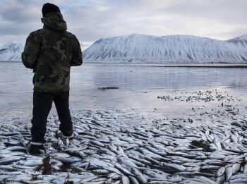 программа Охотник и рыболов: Рыбалка на краю света 10 серия