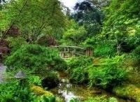 программа Усадьба: Сад своими руками 2 серия