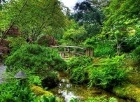 программа Усадьба: Сад своими руками 6 серия