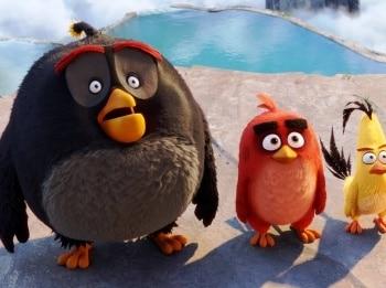 Сердитые Angry Birds в 21:50 на Мультиландия