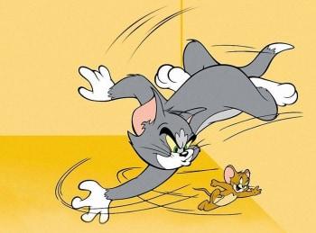 программа Cartoon Network: Шоу Тома и Джерри Кататоническая мышь / Пища для мозга / Кость желаний