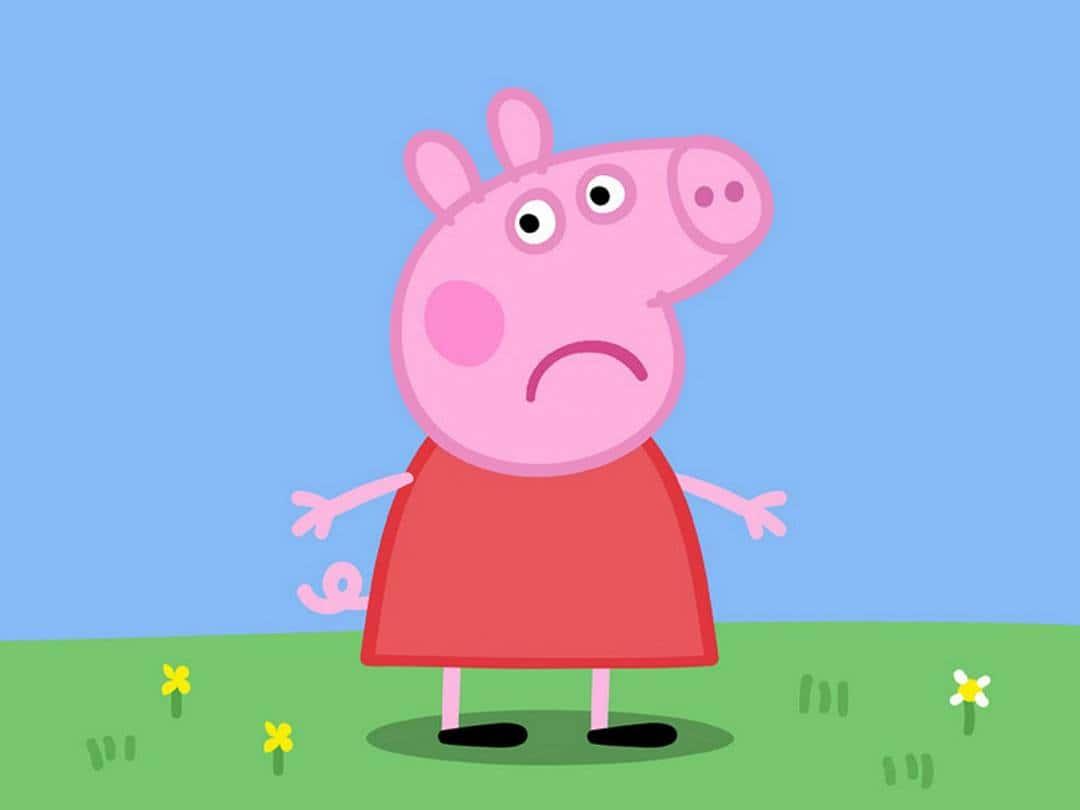 Свинка Пеппа Лисёнок Фрэдди в 11:00 на канале
