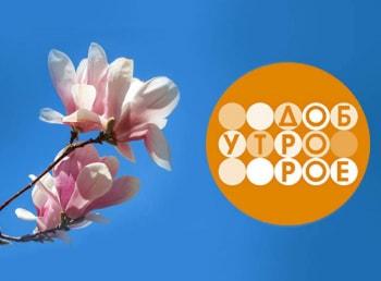 Телеканал Доброе утро Суббота в 06:00 на Первый канал