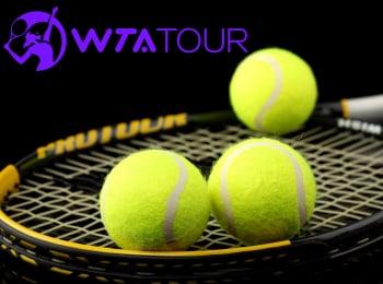Теннис-WTA-500-Мельбурн-Первый-круг-Прямая-трансляция