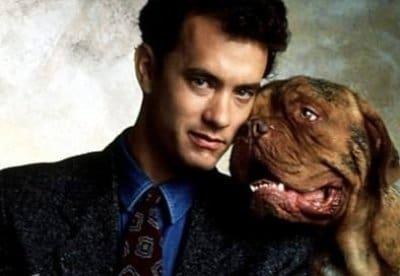 Тернер и Хуч фильм (1989), кадры, актеры, видео, трейлеры, отзывы и когда посмотреть | Yaom.ru кадр
