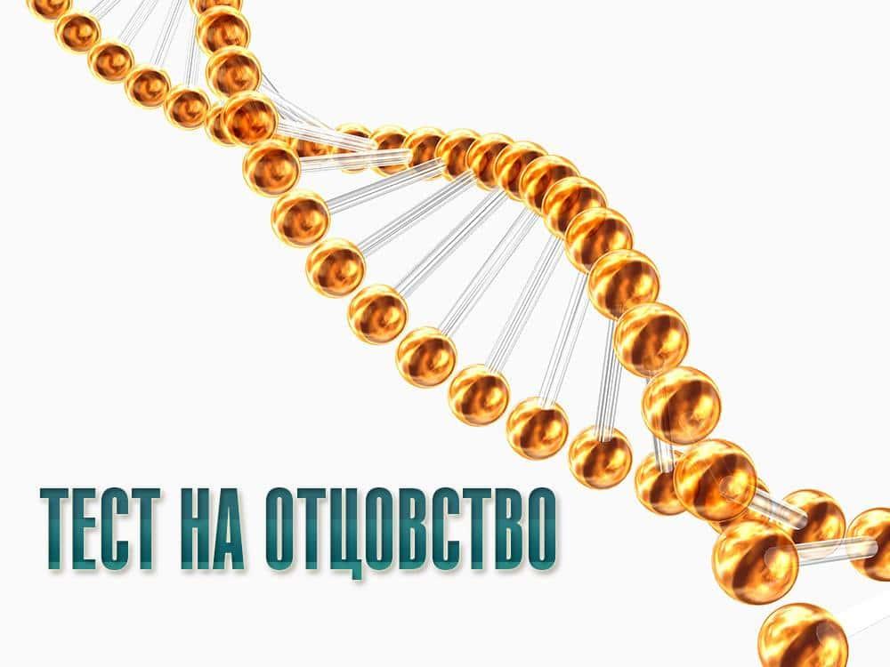 Тест на отцовство 135 серия в 09:35 на канале Домашний