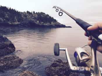программа Охотник и рыболов: Видеокарта уловистых мест России Рыбалка в окрестностях города Калач на Дону
