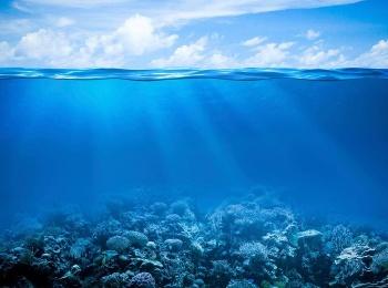 Вода — линия жизни Голубая пучина в 14:55 на канале