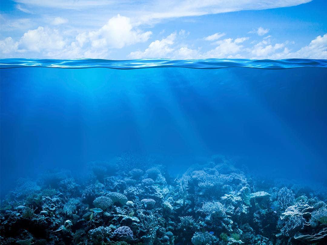 Вода — линия жизни Тёмные воды в 14:55 на канале