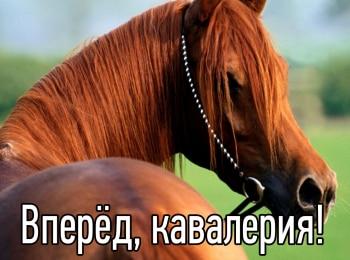 программа Оружие: Вперед, кавалерия! Последняя война красной конницы