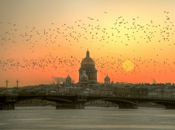 программа Санкт-Петербург: Время суток Прямая трансляция
