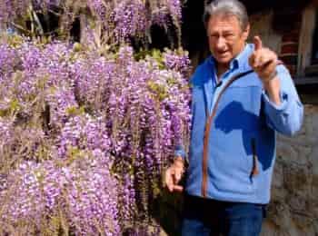 программа Загородный: Вынужденные посадки с Аланом Титчмаршем Овощи для барбекю