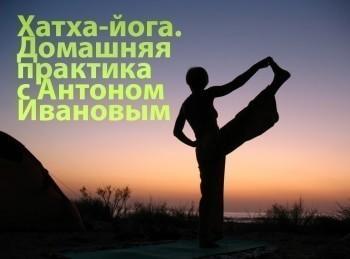 программа Тонус-ТВ: Хатха йога Домашняя практика с Антоном Ивановым Урок 15 й