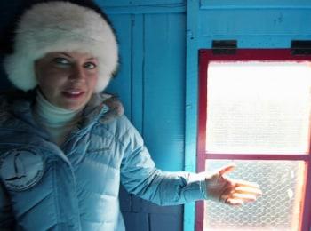 программа Звезда: За отцом в Антарктиду