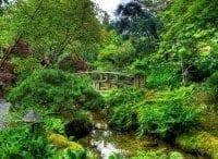 программа Усадьба: Здоровый сад 14 серия
