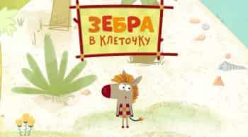Зебра-в-клеточку-Сборник-441-й