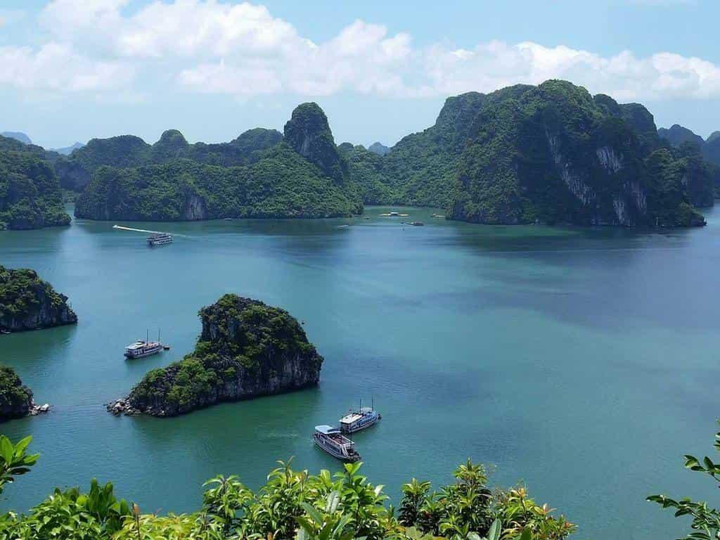 Живая природа островов Юго Восточной Азии Околдованные Луной в 12:20 на канале
