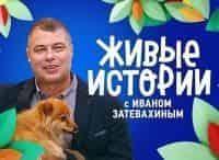 программа Россия 1: Живые истории Выпуск от 19 мая