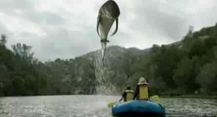 Акульи плотины в 23:00 на канале