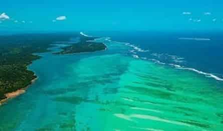 Мадагаскар кадры