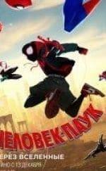 кадр из фильма Человек паук: Через вселенные