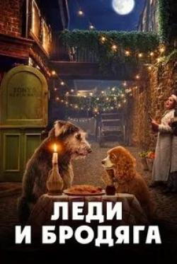 кадр из фильма Леди и Бродяга
