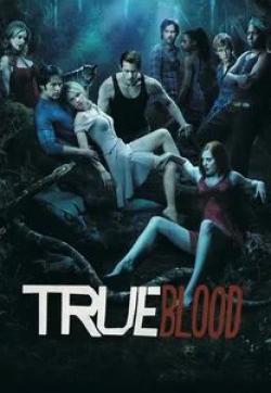 кадр из фильма Настоящая кровь