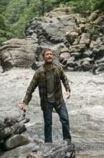 кадр из фильма Переполох в джунглях
