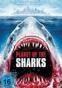 кадр из фильма Планета акул